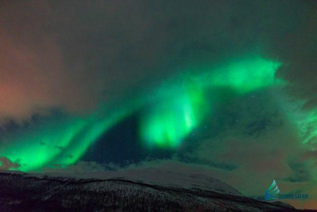 aurora17-g